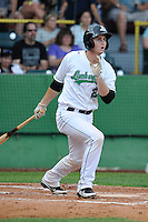 Marcus Littlewood #23 of the Clinton LumberKings swings against the South Bend Sliver Hawks at Ashford University Field on July 26, 2014 in Clinton, Iowa. The Sliver Hawks won 2-0.   (Dennis Hubbard/Four Seam Images)
