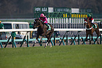 FUNABASHI,JAPAN-MARCH 20: Fan Dii Na,ridden by Yasunari Iwata,takes the lead at last stretch in the Flower Cup at Nakayama Racecourse on March 20,2017 in Funabashi,Chiba,Japan (Photo by Kaz Ishida/Eclipse Sportswire/Getty Images)
