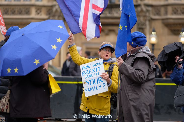 How Would Brexit Benefit Your Family?  Anti-Brexit protesters demonstrate outside the Houses of Parliament as MPs debate the government's Brexit deal, Westminster, London.