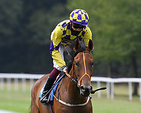 Squelch ridden by Rob Hornby goes down to the start of  The British Stallion Studs EBF Odstock Fillies' Handicap    during Horse Racing at Salisbury Racecourse on 13th August 2020