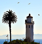 That Lighthouse