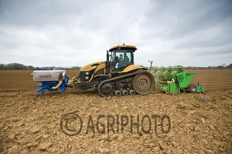 1.4.2011 Planting Potatoes in Lincolnshire..©Tim Scrivener 07850 303986.