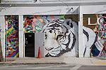 Street Murals, Wynwood