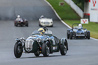 Brands Hatch Event - Aston Martin Celebration - 29/06/2014