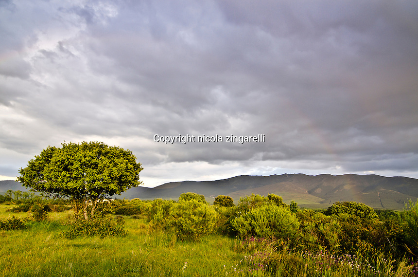 after the storm on the hills of Riaza, in Spain the rainbow shows up lightinh the gloomy sky