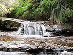 Cascade, Jamison Creek, Blue Mountains, NSW
