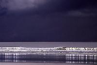 Haida Gwaii (Queen Charlotte Islands), Northern BC, British Columbia, Canada - Storm Waves breaking on North Beach along McIntyre Bay, Naikoon Provincial Park, Graham Island