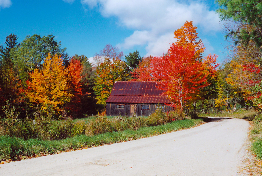 The weathered boards and rusted roof seemed to blend perfectly with the fall color around this barn.