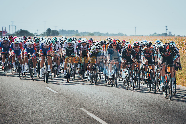 The peloton during Stage 5 of La Vuelta d'Espana 2021, running 184.4km from Tarancón to Albacete, Spain. 18th August 2021.    <br /> Picture: Cxcling | Cyclefile<br /> <br /> All photos usage must carry mandatory copyright credit (© Cyclefile | Cxcling)