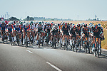The peloton during Stage 5 of La Vuelta d'Espana 2021, running 184.4km from Tarancón to Albacete, Spain. 18th August 2021.    <br /> Picture: Cxcling   Cyclefile<br /> <br /> All photos usage must carry mandatory copyright credit (© Cyclefile   Cxcling)