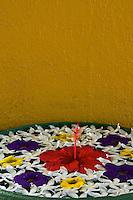 Flowers, Sri Lanka