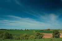 Fields near Roxburgh and Kelso, Scottish Borders