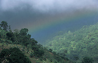 Rainbow, Coffee Plantation, Blue Mountains, Jamaica, January 2005