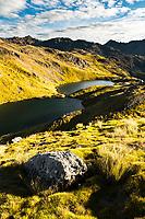 Alpine tarns, Nelson Lake National Park, South Island, New Zealand, NZ