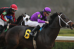 February 17, 2020: Warrior's Charge (6) with jockey Florent Geroux aboard during the Razorback Handicap at Oaklawn Racing Casino Resort in Hot Springs, Arkansas on February 17, 2020. Justin Manning/Eclipse Sportswire/CSM