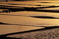 Europe/France/Pays de la Loire/44/Loire-Atlantique/Batz-sur-Mer: Les marais salants au soleil couchant