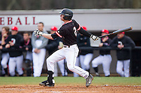 Sam Foy (2) of the Davidson Wildcats follows through on his swing against the Wake Forest Demon Deacons at Wilson Field on March 19, 2014 in Davidson, North Carolina.  The Wildcats defeated the Demon Deacons 7-6.  (Brian Westerholt/Four Seam Images)