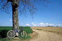 Mountain bike under a tree beside dirt road, Ruy, Isère, France.