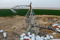 EGYPT, Farafra, potato farming in the desert, pivot circle irrigation at United Farms, chemical fertilizer and phosphoric acid are added with the sprinkle watering, the fossile groundwater from the Nubian Sandstone Aquifer is pumped from 1000 metres deep wells  / AEGYPTEN, Farafra, United Farms, Kartoffelanbau in der Wueste, die kreisrunden Felder werden mit Pivot Kreisbewaesserungsanlagen mit fossilem Grundwasser des Nubischer Sandstein-Aquifer aus 1000 Meter tiefen Brunnen bewaessert, der Bewaesserung werden chemische Duenger und Phosphorsaeure zugesetzt