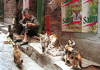 Mrs Ma feeds some of the 11 cats and kittens she is rearing for sale to restaurants. Mrs Ma lives in the suberbs of Guangzhou. Cats are commonly reared in the Chinese countryside specifically for sale to restaurants, where cat meat is now very popular...PHOTO BY SINOPIX