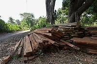 SENEGAL, Casamance, Ziguinchor, deforestation, tree logging , rose wood / Abholzung, Handel mit illegalem Holz, Rosenholz