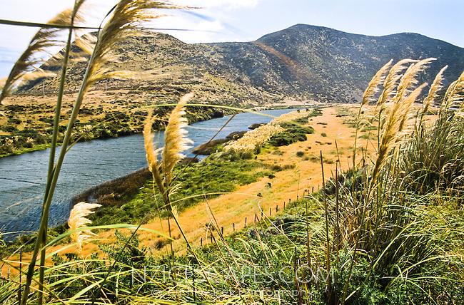 Wainuiomata River near Wellington - Wellington Region, New Zealand