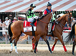 Trigger Warning in the post parade as Catholic Boy (no. 11) wins the Travers Stakes (Grade 1), Aug. 25, 2018 at the Saratoga Race Course, Saratoga Springs, NY.  Ridden by  Javier Castellano, and trained by Jonathan Thomas, Catholic Boy finished 4 lengths in front of Mendelssohn (No. 8).  (Bruce Dudek/Eclipse Sportswire)