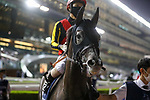 March 27, 2021: CHRONO GENESIS (JPN) #9, in the post parade for the Dubai Sheema Classic on Dubai World Cup Day, Meydan Racecourse, Dubai, UAE. Shamela Hanley/Eclipse Sportswire/CSM