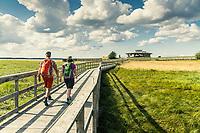 Hikers at the Naturum Hornborgasjön -Pilgrimsleden, West Sweden, Sweden - Västsverige, Sverige