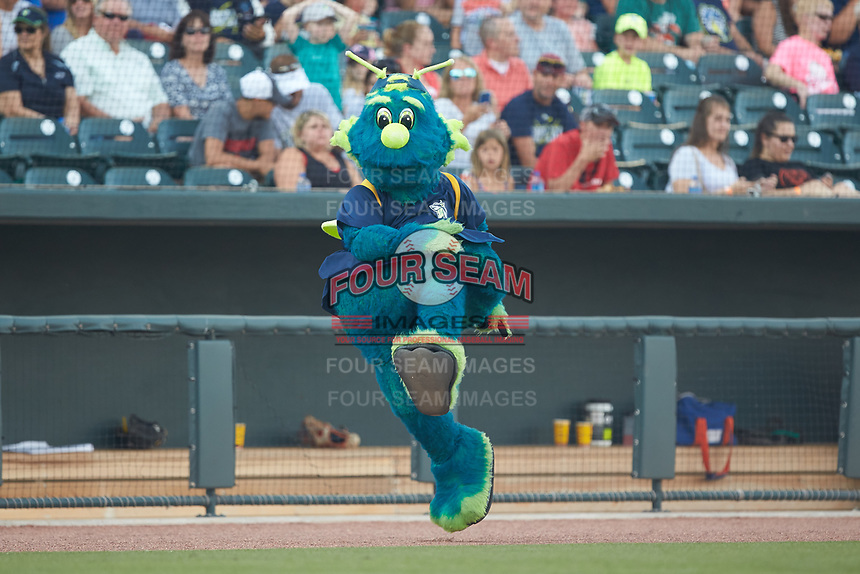 """Columbia Fireflies mascot """"Mason"""" entertains the fans between innings of the South Atlantic League game against the Charleston RiverDogs at Spirit Communications Park on June 9, 2017 in Columbia, South Carolina.  The Fireflies defeated the RiverDogs 3-1.  (Brian Westerholt/Four Seam Images)"""