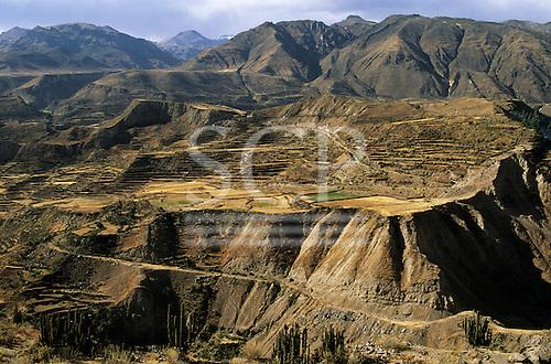 Near Maca, Arequipa Dept, Peru. Track linking Inca and pre-Inca terracing in the Colca Canyon.