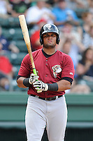 Third baseman Nelfi Zapata (13) of the Savannah Sand Gnats bats in a game against the Greenville Drive on Sunday, August 24, 2014, at Fluor Field at the West End in Greenville, South Carolina. Greenville won, 8-5. (Tom Priddy/Four Seam Images)