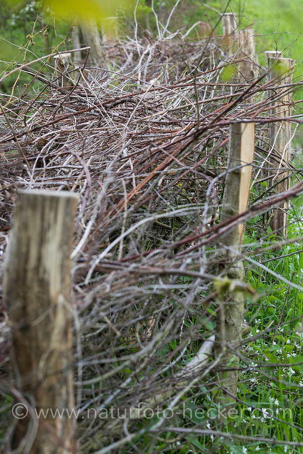 Zaun aus Reisig, Zaun, Begrenzung, Ästezaun, Reisigzaun, Reisighaufen, Ästehaufen, Totholz, Schnittgut aus Ästen und Zweigen wird auf einen Haufen gelegt, als Zaun gestapelt und dient als Lebensraum für viele Tiere, brushwood, brush-wood