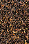 Close-up of the contents of a typical British tea-bag of ordinary quality. The image covers an area of 30mm x20mm.