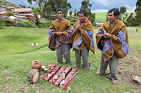 Peru, Urubamba Valley, Quechua Village of Misminay.  Village Men Performing a Welcoming Ceremony with Coca Leaves for Guests.