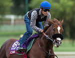 ARCADIA, CA - OCT 31: Om, owned by Sareem Family Trust and trained by Dan L. Hendricks, exercises in preparation for the Breeders' Cup Turf Sprint at Santa Anita Park on October 31, 2016 in Arcadia, California. (Photo by Casey Phillips/Eclipse Sportswire/Breeders Cup)
