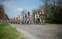 peloton crossing some smooth pavé section<br /> <br /> 103rd Scheldeprijs 2015