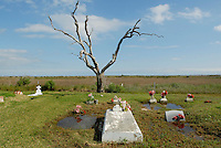 The historic Bernard cemetery near Leeville, Louisiana is sinking into the ground as the land slowly gives way to the sea. Live oak trees like the one pictured here, are dying due to salt water intrusion and frequent flooding by ocean water. Damage to coastal marshes due to oil and gas extraction is accelerating the process of land erosion on the southeast coast of Louisiana in the last century. Without massive coastal restoration, the region is fighting a losing battle against land loss and storm destruction in the coming decades.