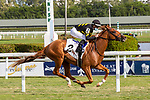 January 02, 2021:  #2 Kentucky Pharaoh with jockey Julien Leparoux  on board, wins the Dania Beach Stakes at Gulfstream Park on January 02, 2021, in Hallandale Beach, Florida. Liz Lamont/Eclipse Sportswire/CSM