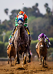 ARCADIA, CA - FEBRUARY 10: Unique Bella #4 with Mike Smith wins the Santa MariaStakes at Santa Anita Park on February 10, 2018 in Arcadia, California. (Photo by Alex Evers/Eclipse Sportswire/Getty Images)