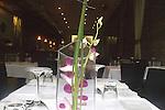 Le Lan Restaurant, Chicago, Illinois