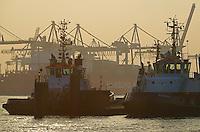 Hamburger Hafenschlepper mit Container Schiff der Hamburg Sued: EUROPA, DEUTSCHLAND, HAMBURG, (EUROPE, GERMANY), 19.02.2015  Hamburger Hafenschlepper mit Container Schiff der Hamburg Sued