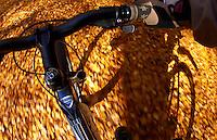 Steve Behr riding Kona Dawg deluxe mountain bike..Virginia Water , Surrey  November 2009..pic copyright Steve Behr / Stockfile