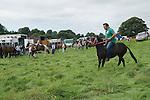 Priddy Horse Fair Somerset Uk 2009