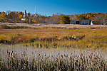 Fall colors the Mill Creek Marsh in Sandwich, Cape Cod, MA, USA