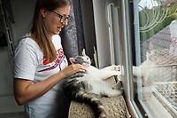 Kater Loki liegt am Fenster und sieht in die Ferne, Besitzerin Lioba Bitsch streichelt ihn - 18.08.2021 Büttelborn: Kater Loki kehrt zurück
