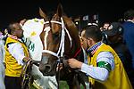 RIYADH,SAUDI ARABIA-FEB 29: Maximum Security,ridden by Luis Saez,wins the Saudi Cup at King Abdulaziz Racetrack on February 29,2020 in Riyadh,Saudi Arabia. Kaz Ishida/Eclipse Sportswire/CSM