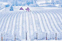 Sokol Blosser Vineyards with snow and farm house. Oregon