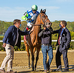 MAY 01, 2021 : Magic Attitude with Trevor McCarthy aboard, wins the Gr. 2 Sheepshead Bay Stakes, at 1 3/8 mile for fillies & mares on the turf, at Belmont Park, Elmont, NY. Sue Kawczynski-Eclipse Sportswire-CSM