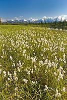Tundra kettle pond, Alaska mountain range, Interior, Alaska.